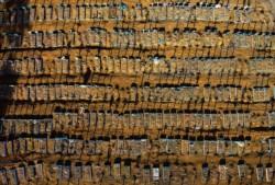 Las fosas abiertas en Manaos para depositar cuerpos no alcanzan.