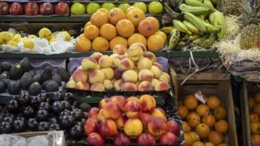El rubro de las frutas es donde se produjo el mayor aumento en el último año para la Patagonia.