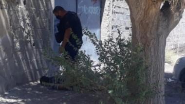 El sujeto pretendió escapar y hubo un gran esfuerzo policial. Pero pocas horas después quedó en libertad.
