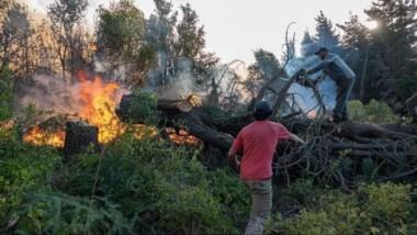 Los trabajos que se llevan adelante con el objetivo de cortar el avance del fuego por los bosques.