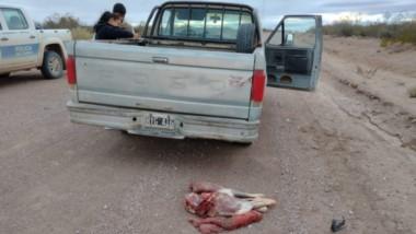 El procedimiento se desacó en la ruta provincial número 4, a las afueras del radio urbano de Madryn.