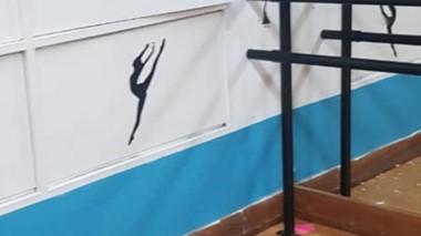 Los cristales del gimnasio fueron objeto de la agresión de un vecino.