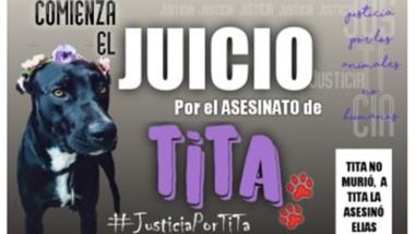 """El asesinato del can """"Tita"""" sucedió hace un año y dos meses. El afiche."""