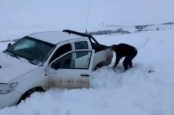El 2020 fue el invierno más crudo de la Patagonia en 20 años. Para este 2021 pronostican que el clima será más cálido.