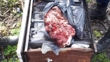 En las diligencias se encontraron carne faenada de una res bovina.
