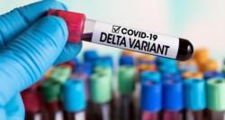 La patóloga pediátrica argentina Marta Cohen afirmó este martes que la variante Delta del coronavirus
