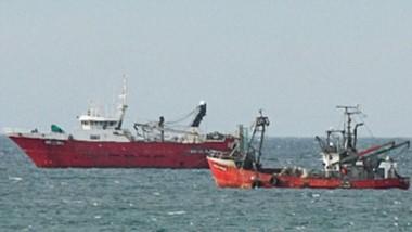 Los pesqueros permanecen parados en aguas del Golfo con algunos casos de Covid entre sus tripulantes.