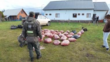 La carne venía transportaba en la caja de la camioneta interceptada.