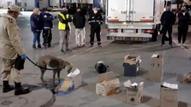 A los estupefacientes lo intentaban ingresar en paquetes simulando ser provisiones para los barcos.