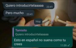 Un chat de WhatsApp se volvió viral en las últimas horas cuando la usuaria de Twitter @chochito compartió la captura de pantalla de una conversación que tenía con su amigo británico