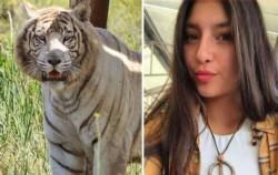 La mujer fue identificada como Catalina Torres, de 21 años.