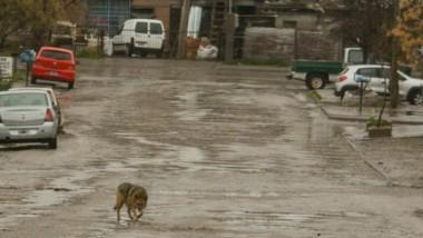 Lluvia. Unas 250 familias debieron recibir auxilio debido a los efectos del temporal en el Valle Inferior.