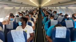 Los Pumas compartieron vuelo con los Springboks.