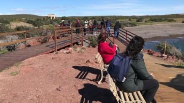 Visitantes provinciales y nacionales llegaron para ver a los pingüinos.