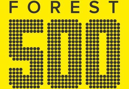 Forest 500 logo no tagline rgb 3