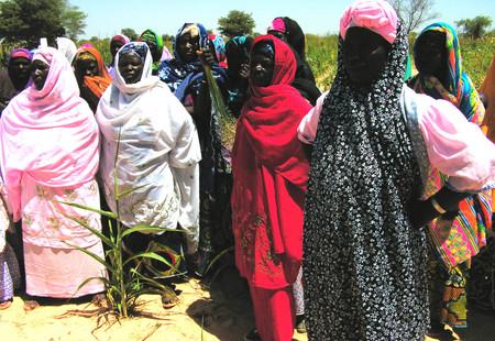 Fg0 fuma gaskiya women project