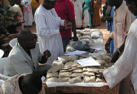 03 waf seed systems seed faire at serkin haoussa  niger bigh oct 2010