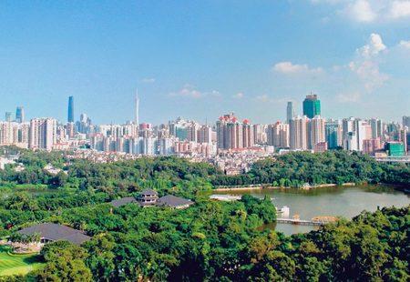 Bee guangzhou green public institution in guangzhou 3 768x432