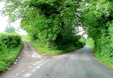 Fork in the road   geograph.org.uk   1355424