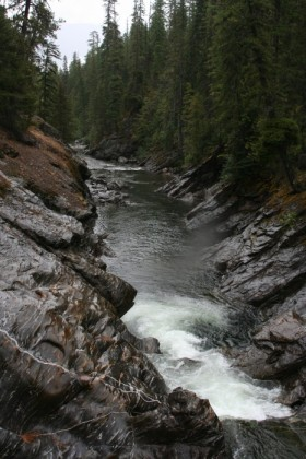 Icicle Creek, looking downstream