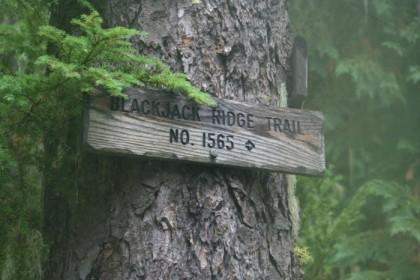 Blackjack Ridge Trail, our day hike of choice