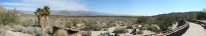 Desert scrubland