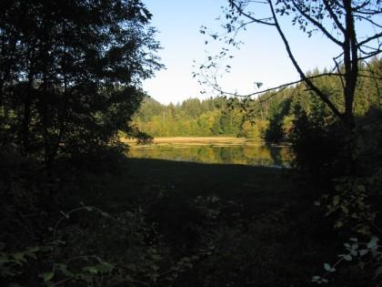 Lake at Tiger Mountain
