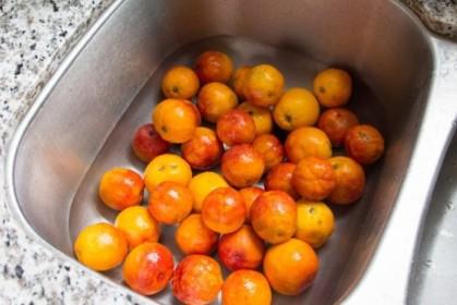 Pre-zesting blood oranges