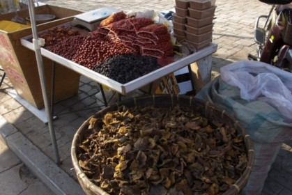 Dried mushrooms and berries