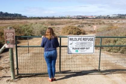 So close to wildlife