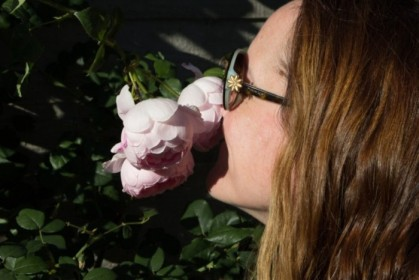 Rose inspector