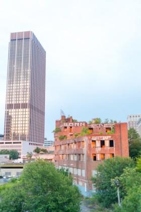 Greening vacant building