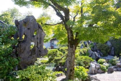 Rocks inside Dr. Sun Yat-Sen Classical Chinese Garden