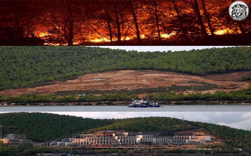 """Aşırı Sıcaklarla Birlikte Yaşanan Orman Yangınlarına İlişkin Hükumetten Açıklama: """"Demek ki Neymiş? Ormanları Yok Etmemişiz"""""""