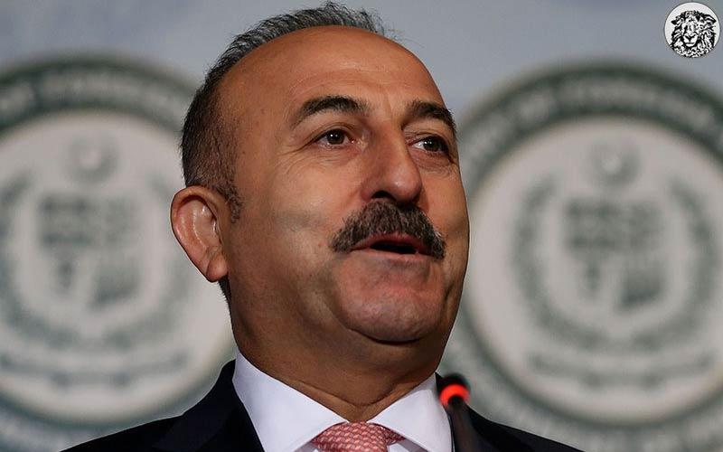 """Dışişleri Bakanı Çavuşoğlu: """"İdam Gelirse Avrupa Birliğine Almazlarmış. Yahu Yokken de Almadınız."""""""