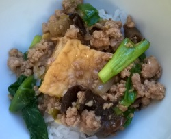 Tofu and Pork in Oyster Sauce