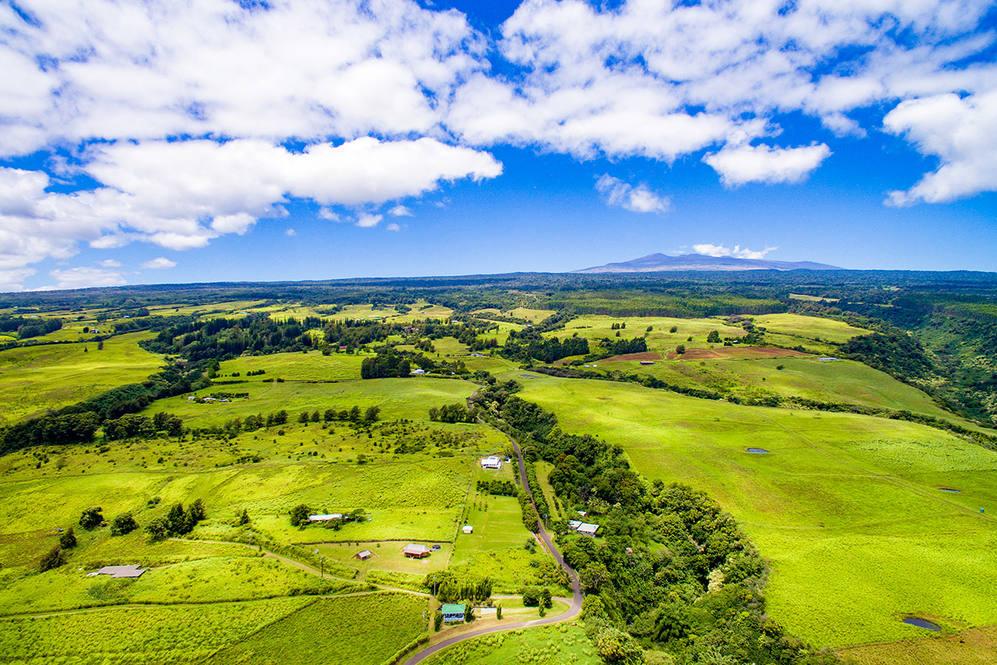 Mauna kea view i
