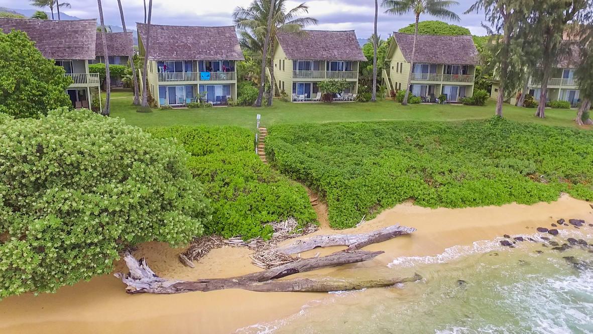 Drone beach path