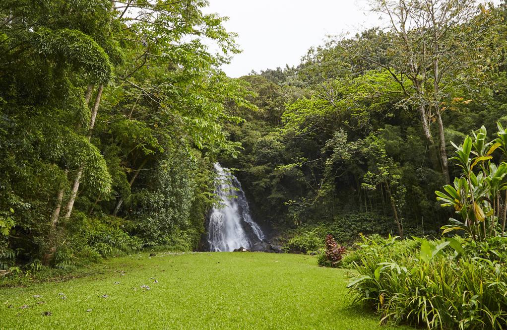 Nuuanu pali drive honolulu hawaii20
