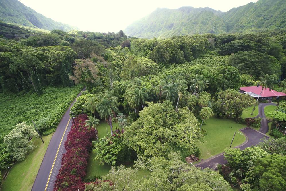 Nuuanu pali drive honolulu hawaii02