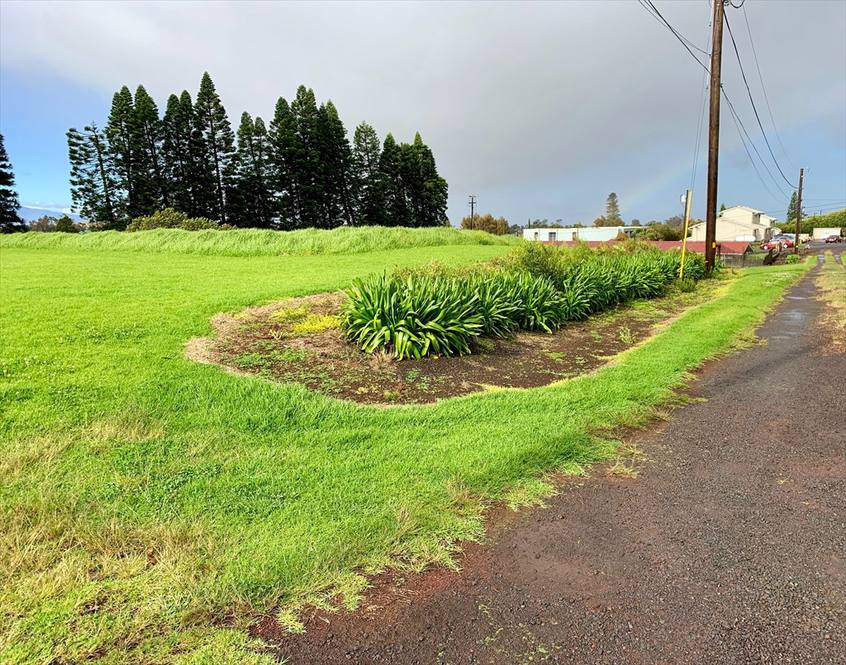 OPELO RD lot 6 | Land for Sale in KAMUELA | 626716 | Hawaii Life