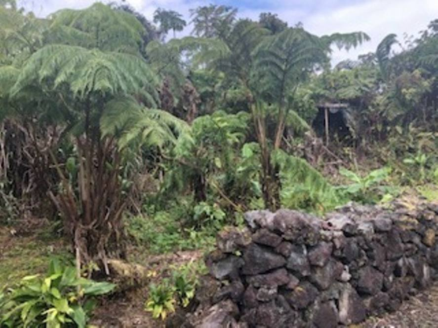 15-1840 AKEAKAMAI LP | House for Sale in PAHOA | 625052 | Georgie Hunter |  Hawaii Life