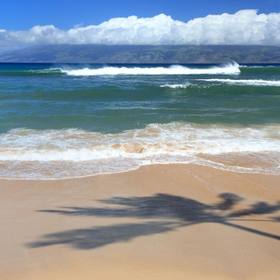 Hawaii Real Estate - 1490 Condos, Houses & Land for Sale