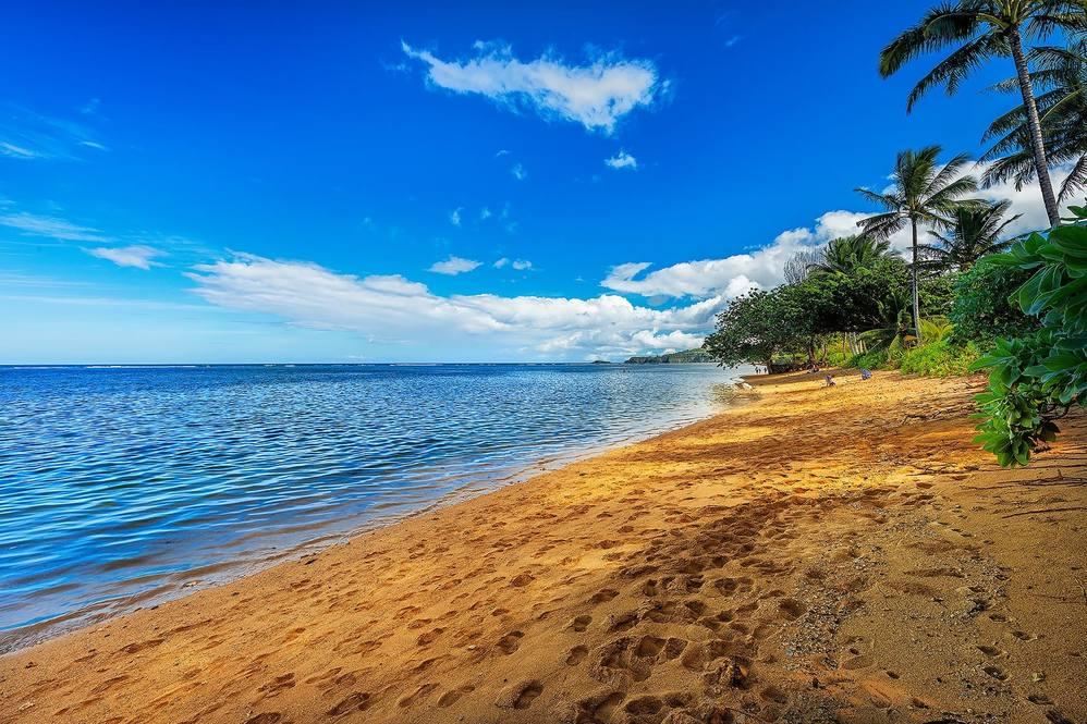 13 anini beach 029
