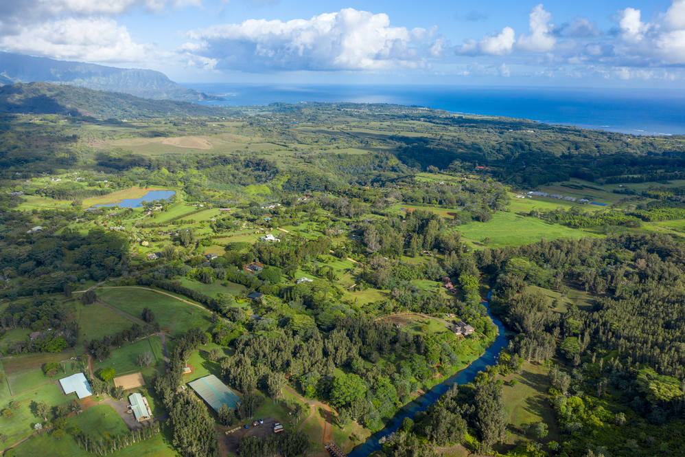 23. kamooakoa high res 24