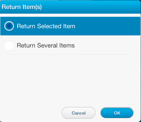 return_items_selection.png