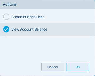 Punchh_View_Account_Balance.png