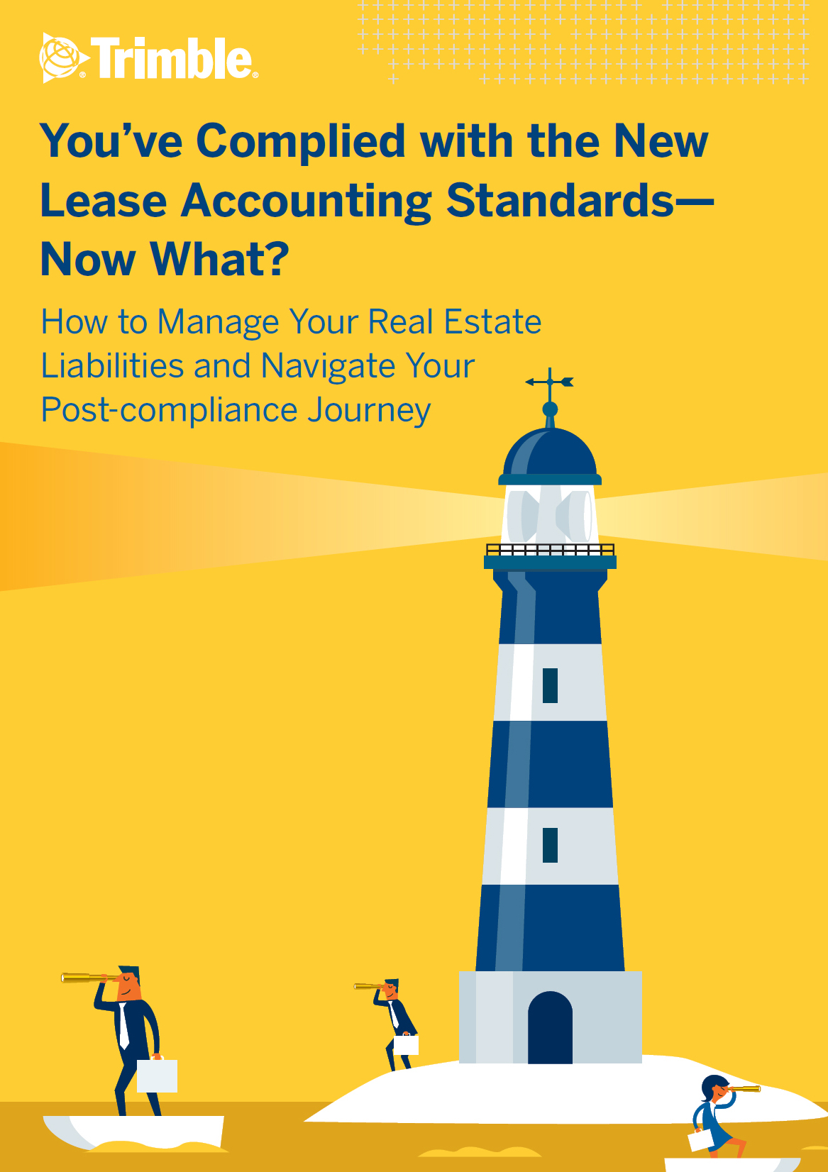 You've Complied with the New Lease Accounting Standards – Now What?