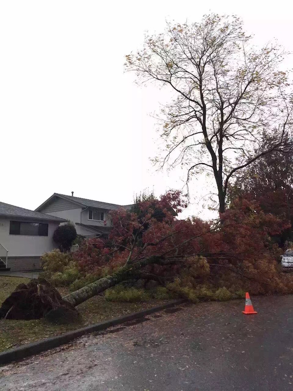 vancouver-storm-d