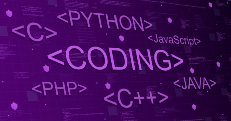 image shows the programming languages.